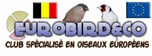 Forum Eurobird and Co
